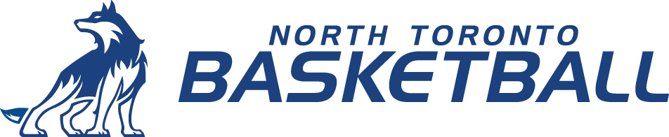 NT Basketball Retina Logo